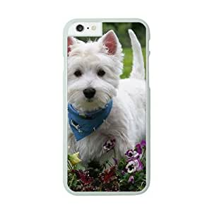 Cute Westie pup Image On The iPhone 6 Plus White Cell Phone Case AMW896581