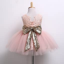 Newborn Toddler Baby Girls Floral Sleeveness Lace Princess Dresses Tutu Sundress (0-6M, Pink)