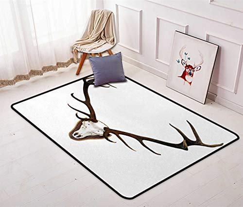 Antlers Printed Area Rugs Antlers of a Huge Stag Premium Chair Mats Rug Floor Carpet 2'7'' x 3'11'' Bones Mounted on a Wooden Plate Prize Skull Print