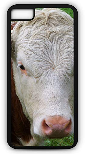 iPhone 6 Plus 6+ Case Hereford Beef Cattle Steer Cow Brown and White Cow Bovine Customizable by TYD Designs in Black Plastic ()