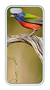 iPhone 5S TPU White Color Soft iPhone Case Latest style Case Suit 4.0 Inch Very Nice And Ultra-thin Case Easy To Operate Bird Stand Wi Red Tree