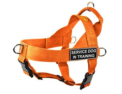 Dean & Tyler DT Universal No Pull Dog Harness with Service Dog in Training Patches, Orange, Large