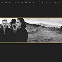 The Joshua Tree (30th Anniversary 2LP Vinyl)
