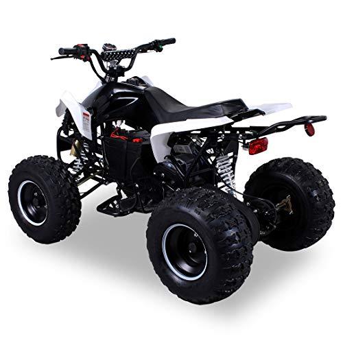 E-QUAD 1000W S-14 Speedy schwarz-weiß Elektro Quad ATV Kinderquad Elektroquad Funsport