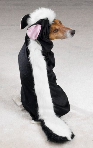 SMALL - LITTLE STINKER - Dog Halloween Costume - Skunk Costumes For Dog