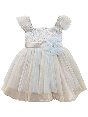 Rare Editions Baby Girls Periwinkle Ivory Lace Baby Dress (6 months)