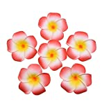 20Pcs-Frangipani-Flower-Artificial-Plumeria-Foam-Fake-Egg-Color-Flower-for-Wedding-Party-Decoration-Handcraft-SuppliesBeigeM