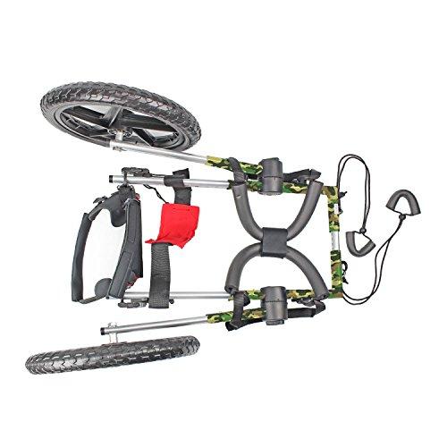 Amazon Com Walkin Wheels Dog Wheelchair