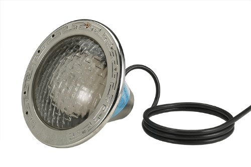 Pool Light 500 Watt Bulb w/ 100ft Cord by Pentair