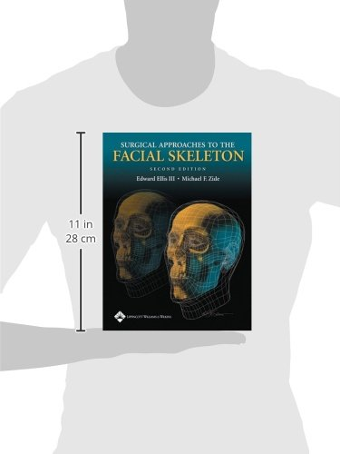 Surgical Approaches to the Facial Skeleton by imusti