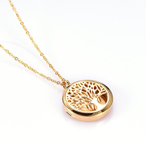 Stainless Steel Essential Oil Diffuser Locket-Aromatherapy Jewelry-12 Pads (Gold) ()