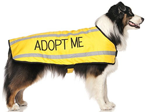 """ADOPT ME Yellow Warm Dog Coats S-M M-L L-XL Waterproof Reflective Fleece Lined (New Home Needed) Donate To Your Local Charity (M-L Back 17"""""""