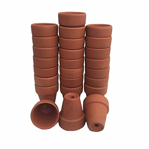 25  3quot x 25quot Clay Pots  Great for Plants and Crafts