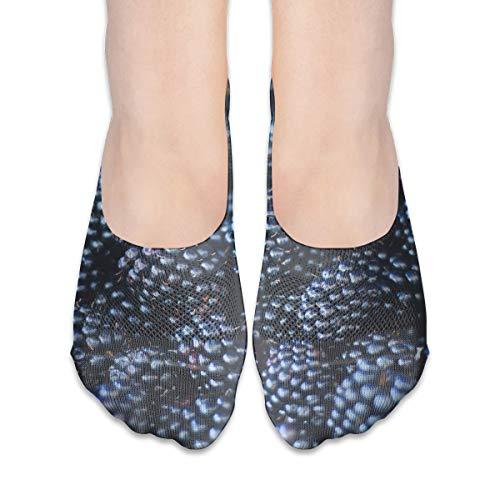 - BRECKSUCH Black Raspberry Ripe Suits Women's Non Slip Boat Socks,Unique Casual Thin Polyester Cotton Low Cut Socks