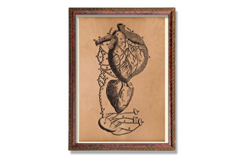 Human heart poster Anatomy scheme poster Medical illustration Gothic decor by Antique Prints