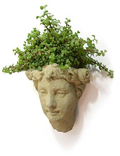 - Designer Stone Lady's Head Cast-Stone Wall Planter, Antique Stone Color