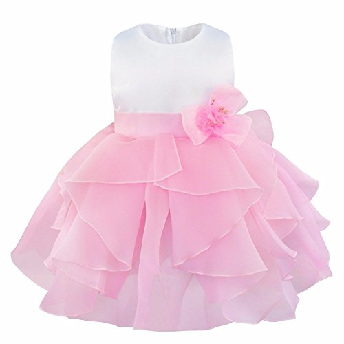 FEESHOW Baby Girls Ruffle Flower Baptism Dress Christening Gown Wedding Party Birthday Tutu Dress Pink 9-12 Months