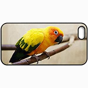 Customized Cellphone Case Back Cover For iPhone 5 5S, Protective Hardshell Case Personalized Parrot Black