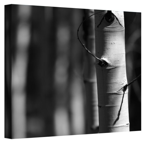 Art Wall A Way Out Wrapped Canvas Art by Mark Ross, 18 by 24-Inch