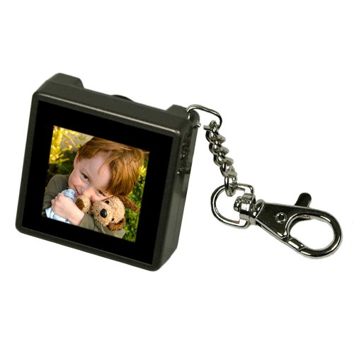 Digital Foci PAO-150 1.5-Inch Pocket Album OLED Keychain Digital Photo Viewer (Warm Gray)