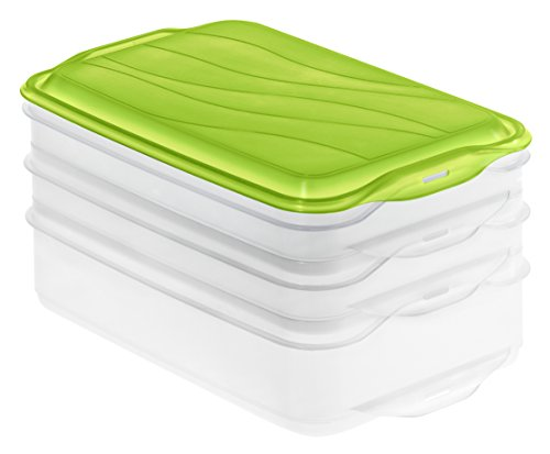Rotho Rondo Kitchen Food Centre with 1 Lid, Apple Green/Transparent, One Size