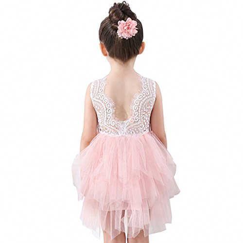 Peach Pink Lace - Lace Back Flower Girl Dress for Little Girls,Kids Cute Backless Dress Embroidered Mesh Lace Applique Dress 3-10T(Pink, 3-4 Years)