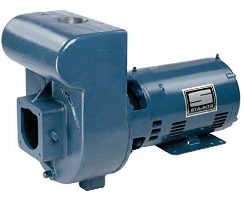Pentair DMH171 D Series Pump 3HP 1-Phase 230V Medium Head (Pentair Medium Head Pump)