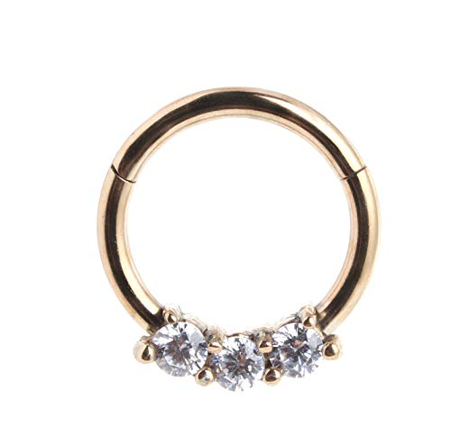 365 Sleepers 316L Surgical Steel 16G CZ Gem Hinged Segment Ring Body Piercing - 8mm Rose by 365 Sleepers