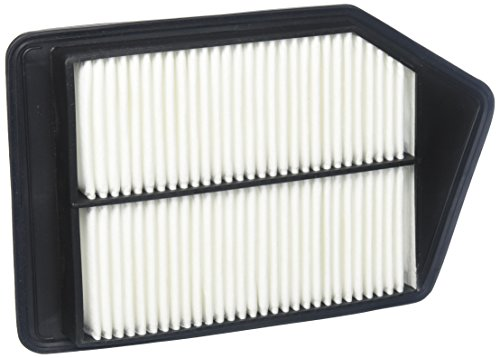 ACDelco A3629C Professional Air Filter