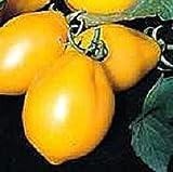 White (Light) Wonder Tomato Seeds