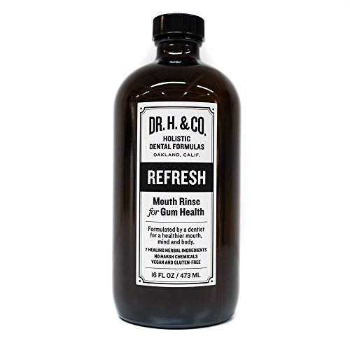 Dr. H. & Co. Dentist Formulated Refresh Mouthwash - All Natural Herbal and Holistic Mouth Rinse for Healthy Gums and Teeth (16 oz Glass Bottle) (Extract Low Organic Alcohol)