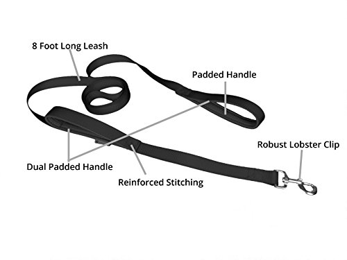 dog leash - pet supplies for dogs leashes