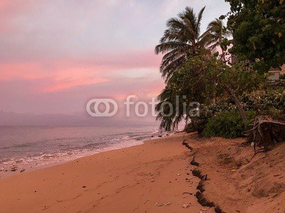 Adrium 199086491 - Morning on Maui Beach