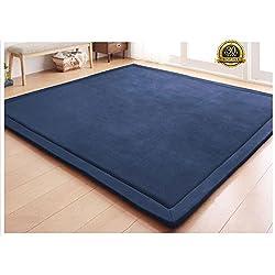 HIGOGOGO Japanese Coral Velvet Carpet Thickness:2cm, Blue Children Play Mat Plush Foam Bedroom Mat Area Rug Yoga Mat, 31 by 78 inch Reversible Living Room Carpet/Children Crawling Mat