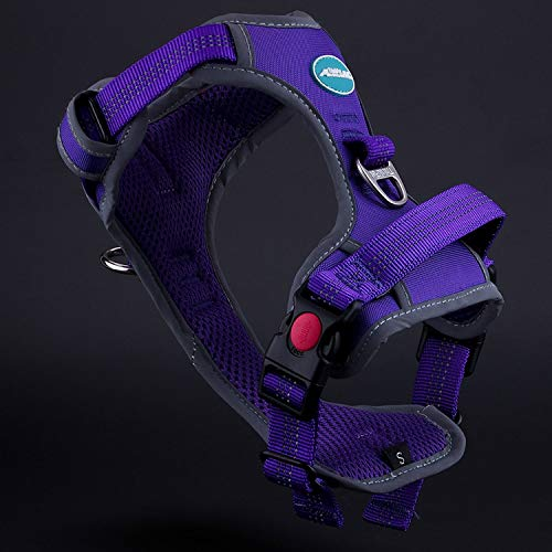 (ThinkPet No Pull Harness Breathable Sport Harness - Reflective Padded Dog Safety Vest Adjustable Harness, Back/Front Clip for Easy Control M)