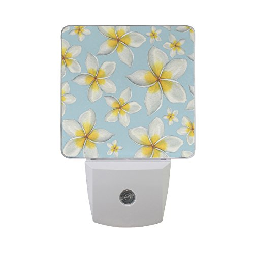 Naanle Set of 2 Hawaiian Flowers Floral On Blue Watercolor Hand Painted Design Auto Sensor LED Dusk To Dawn Night Light Plug In Indoor for Adults - Hand Painted Floral Plug