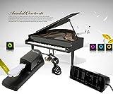 ENJOYPRO Sustain Pedal, Electronic Piano Keyboard