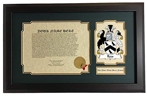 Rees - Coat of Arms and Last Name History, 14x22 Inches Matted and Framed ()