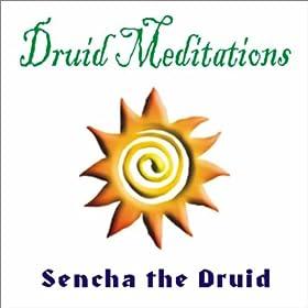 Druid Meditations