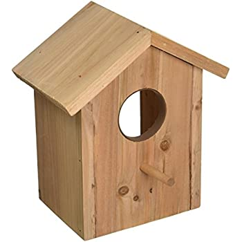 Secret Bird Watcher Birdhouse