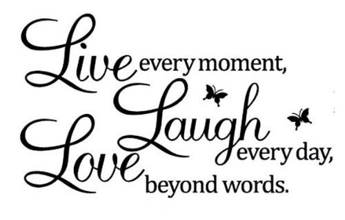 Live Laugh Love Butterflies Decal Vinyl Sticker|Cars Trucks Vans Walls Laptop| BLACK |7.5 x 4.5 in|CCI1145 (Vinyl Stickers Butterfly)