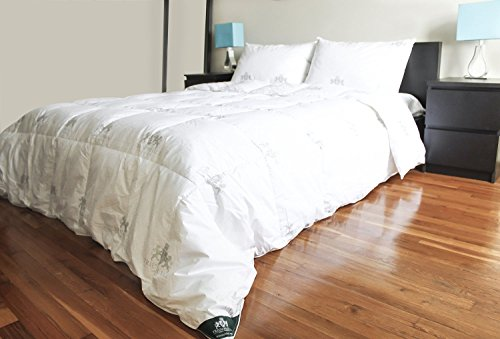 Triumph Hill Feather And Down Bed Comforter  Queen  White