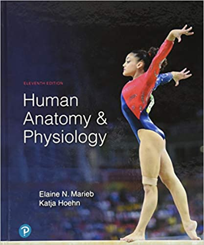 Human Anatomy & Physiology 11th Edition