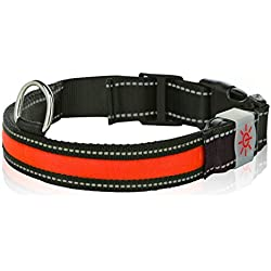 Moco Best Light Up Rechargeable LED Nylon Dog Collar with 3 Light Settings and Metal Buckle - Includes USB Charger - Keep Pet Safe and Visible 3 Sizes (Medium, 1 x 19.5 in, Red)