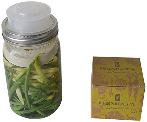 Ferment'n Home Fermentation Kit