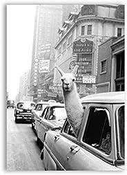HYFBH Llama en un Taxi en Times Square Impresión en Lienzo y póster Impresión de Llama Vintage Ciudad de Nueva York Foto Ima