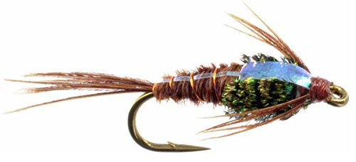 (Feeder Creek Fly Fishing Flies Flashback Pheasant Tail Wet Flies - One Dozen Hand Tied Flies Sizes 12,14,16,18 Fly Pattern (18))