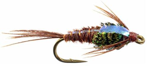 Feeder Creek Fly Fishing Flies Flashback Pheasant Tail Wet Flies - One Dozen Hand Tied Flies Sizes 12,14,16,18 Fly Pattern (18)