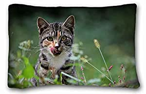 """Custom ( Animals cat view macro ) Pillowcase Standard Size 20""""X30"""" Design Pillow Case Cover suitable for Full-bed"""