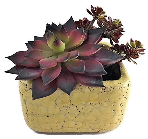 Lemon Planter (Mountain Stoneware Succulent Planter | 3.25 Inch Square Flower Herb Air Plant Cactus Ceramic Pot for Indoor Outdoor Use | 1 Piece (Lemon Yellow))